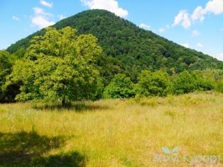 Гора Шаян