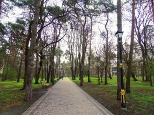Отдых в Миргороде.  Парк