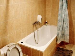 """2-комнатный номер Люкс, Ванная, Отель \""""Мальвы\"""""""