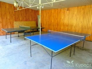 Тенисный стол
