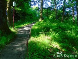 Дорога к спальному корпусу №2