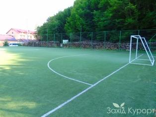 Мини футбол