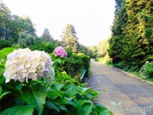 sanatoriy_hrustalnyj-dvorec-truskavets-park