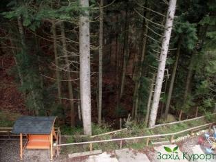 Вид на лес и балкона номера
