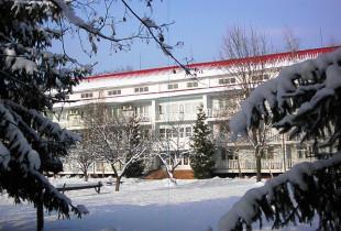 Новий 2019 рік у санаторії «Теплиця» м.Виноградів
