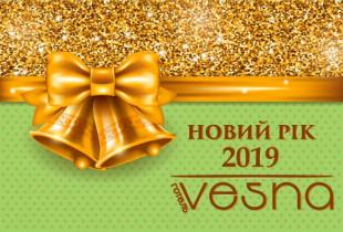 """Новий 2019 рік в готелі """"Весна"""" м.Трускавець"""