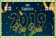 Новый 2019 год в санатории «Карпаты» г.Трускавец