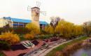 Відпочинок в санаторіях Миргорода