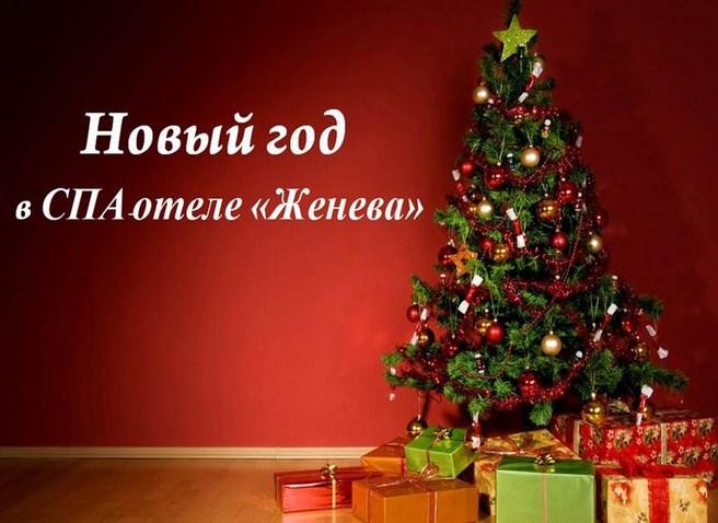 Новый год Женева Трускавец