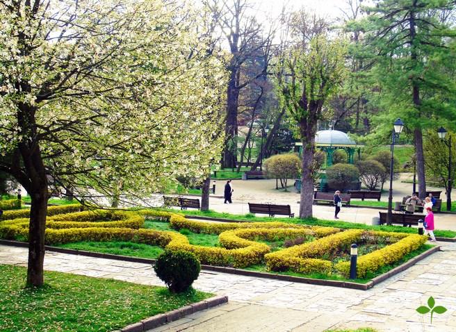 Майские праздники в Трускавце