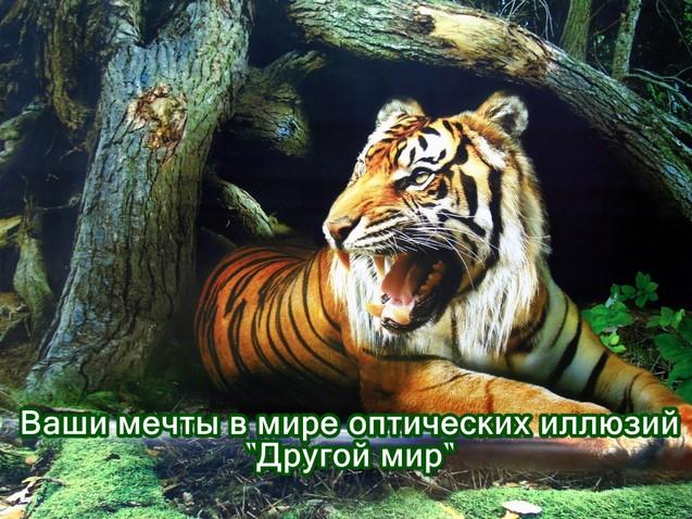 """Арт-мастерская """"Другой мир"""" в Трускавце"""