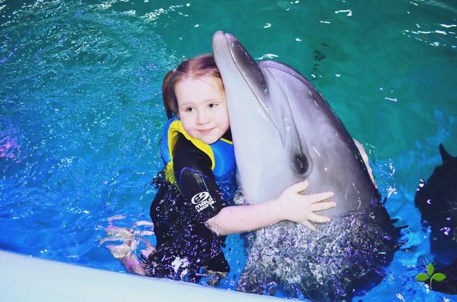 Развлекательно-оздоровительный комплекс с дельфинами «Оскар»